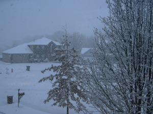 snowy-morn-2.jpg